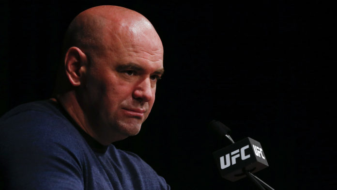Dana White insulta a fan